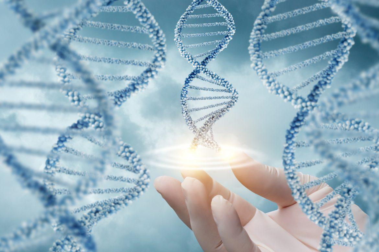 Genlerin ürünü ile ilgili görsel sonucu